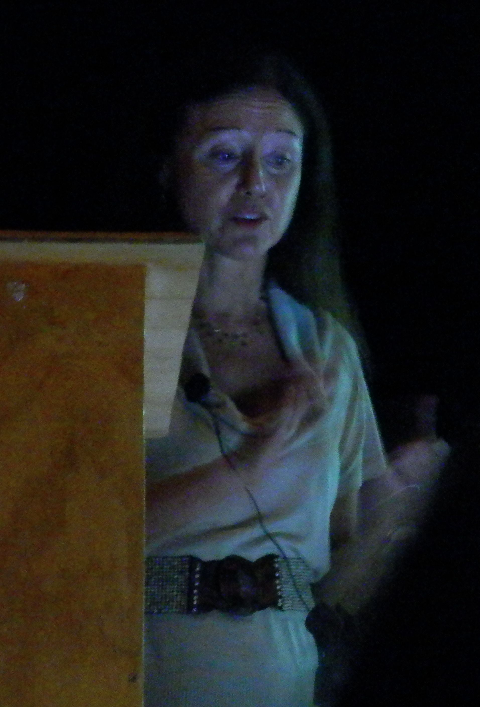 Marianne Bronner talk 2