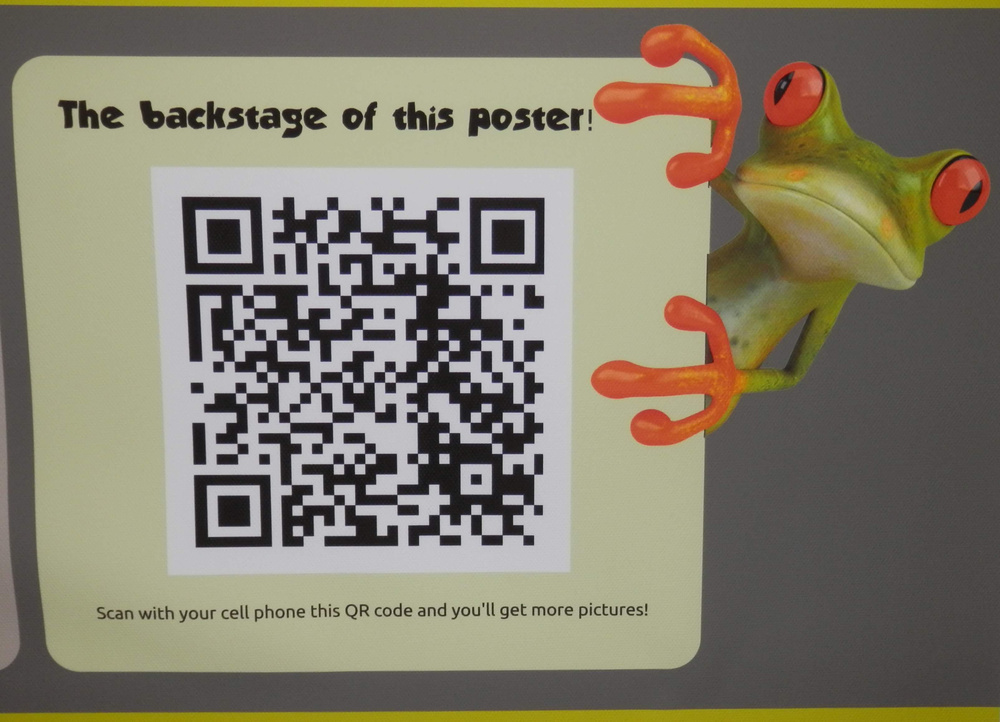 frog with qr code