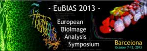 EuBIAS2013