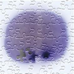 sqt puzzle