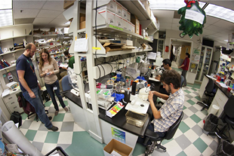 The Moens Lab