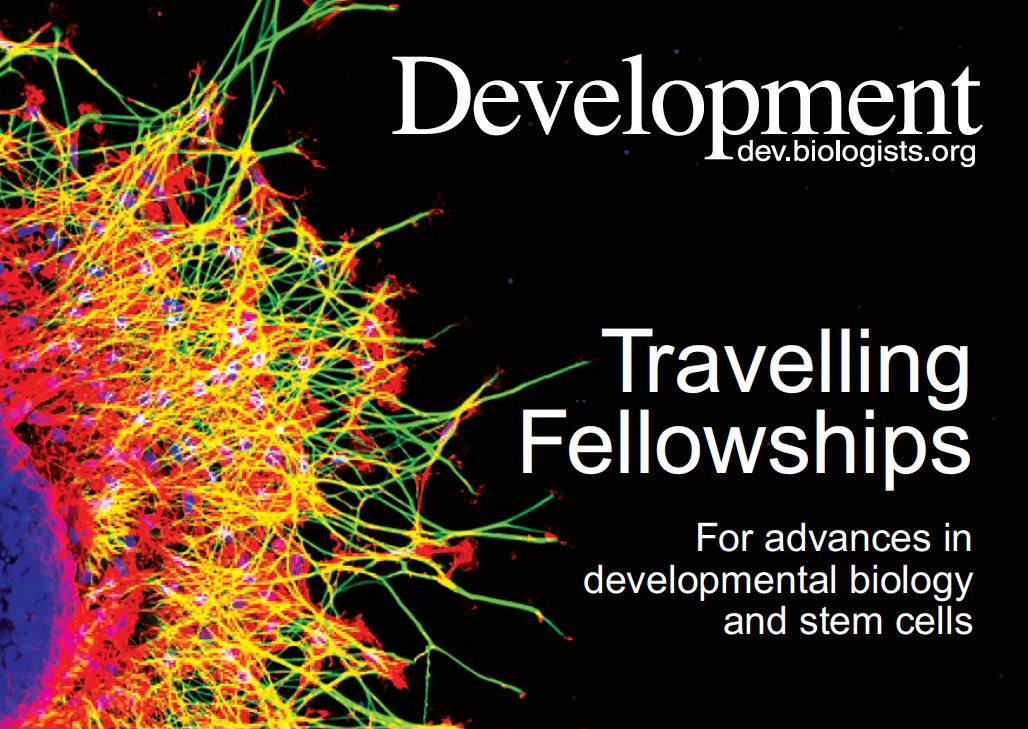 Travelling Fellowships image