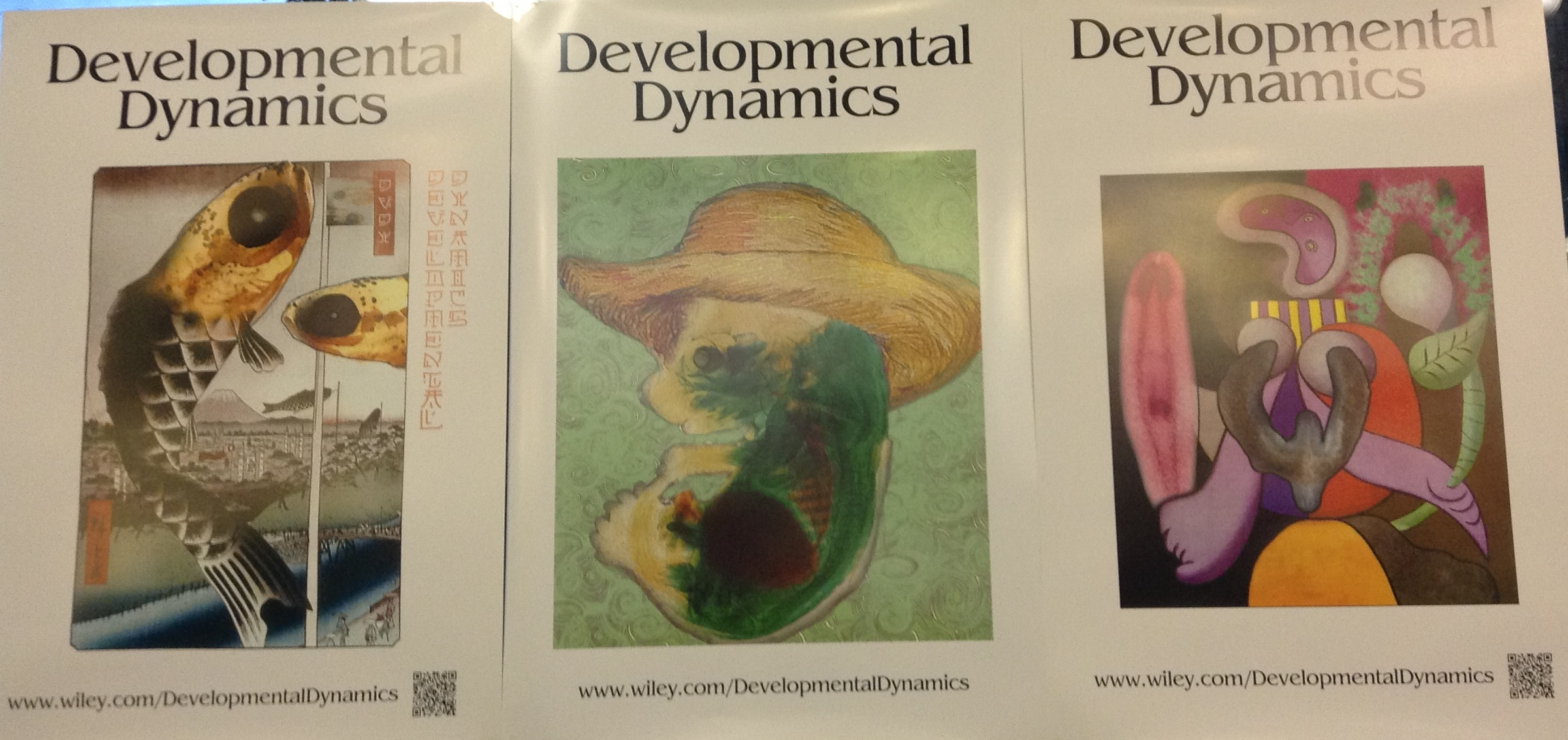 Sciart posters spotted at SDB