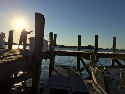 Early morning at the marina. Photo: C. Munro