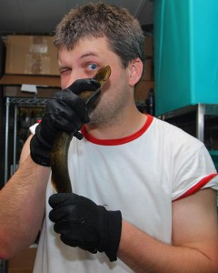 David Jandzik with an adult lamprey
