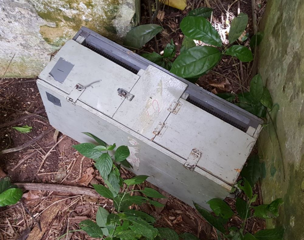 Figure 5: Field box used to store live bats for safe transport to the lab.