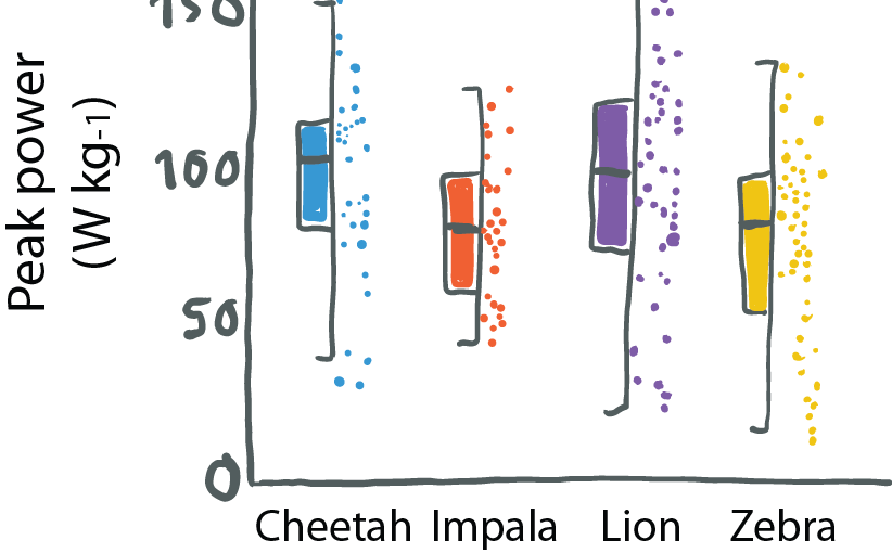 Half Boxplot, half data plot. Re-drawn part of a figure from Wilson et al 2018