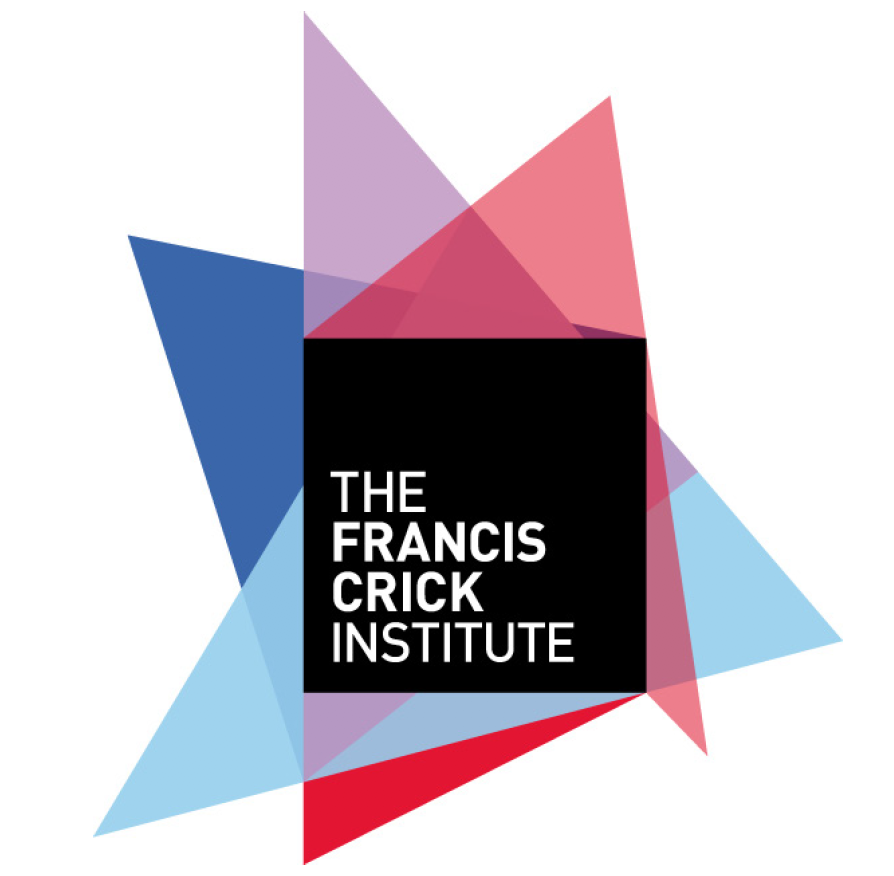 Faculty Positions | The Francis Crick Institute - the Node
