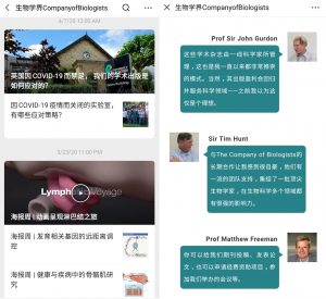 Screenshot showing articles on WeChat