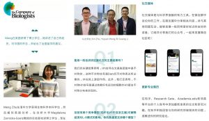 Screenshots of different articles published on WeChat